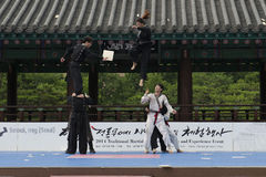 Den traditionella koreanska kampsportkapaciteten och erfarenhetshändelsen visar Royaltyfria Foton