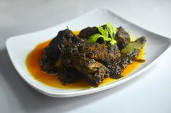 Den traditionella lokala maträtten från Malaysia kallade nötköttopor blandning och kock med all asiatisk krydda för smaklig och a royaltyfri bild
