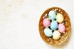 Den traditionella mallen för det easter kortet med pastellfärgade färger målade organiska ägg i vide- korg med hö och dekorativa  Royaltyfria Foton