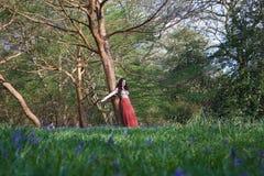 Den trendiga damen lutar mot ett träd i en engelsk skogsmark i tidig vår, med blåklockor i förgrunden royaltyfri bild