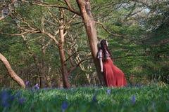 Den trendiga damen lutar mot ett träd i en engelsk skogsmark i tidig vår, med blåklockor i förgrunden arkivfoto