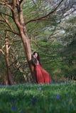 Den trendiga damen lutar mot ett träd i en engelsk skogsmark i tidig vår, med blåklockor i förgrunden fotografering för bildbyråer