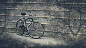 Den trevliga cykeln parkerar Royaltyfri Fotografi