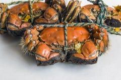 Den trevligt ordnade läckra krabban Arkivbild