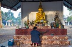 Den trogna buddistiska kvinnan ber i den Akat Amnuai templet, det Sakon Nakhon landskapet, Isan, Thailand fotografering för bildbyråer