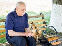 Den trogna hunden med förtroende ser i ögon av hans förlage vän arkivfoto