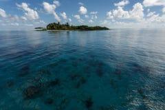 Den tropiska ön stiger ovanför korallreven i Hol Chan Marine Reserve Belize Royaltyfri Bild