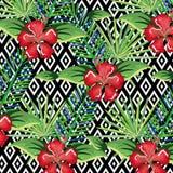 Den tropiska blomman med den skrivbords- datoren för abstrakt bakgrund isolerade symbolen Arkivbilder