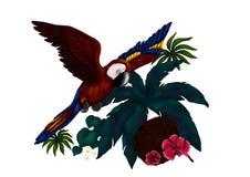 Den tropiska flygpapegojan med exotiska djungelväxter en bild av min själv skapade tropiska fåglar för serie`, 2017 `, Royaltyfria Bilder
