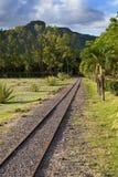 Den tropiska forntida railwayinen för det smala måttet parkerar, Mauritius Royaltyfri Foto