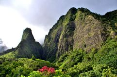 Den tropiska Iao visardalen parkerar Arkivbilder