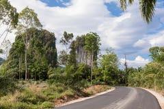 Den tropiska naturen med gömma i handflatan, och karsten vaggar Thailand Royaltyfri Foto