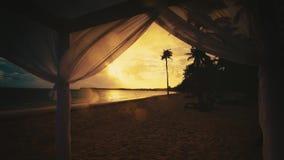 Den tropiska paradisösikten av stranden med gömma i handflatan sett från axeln, soluppgånglandskap, morgon lager videofilmer