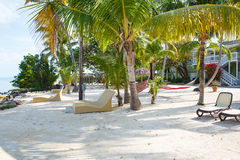 Den tropiska semesterorten med chaisen longs och hängmattor Arkivfoto