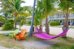 Den tropiska semesterorten med chaisen longs och hängmattor Fotografering för Bildbyråer