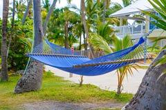Den tropiska semesterorten med chaisen longs och hängmattor Royaltyfria Bilder