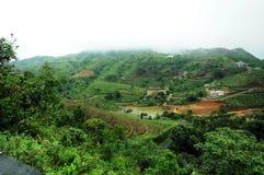 Den tropiska skogen för höga berg med moln som passerar i Indien Arkivfoto