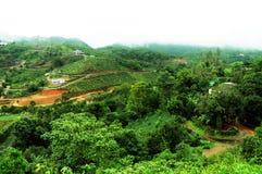 Den tropiska skogen för höga berg med moln som passerar i Indien Royaltyfri Bild