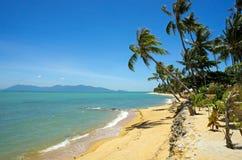 Den tropiska stranden gömma i handflatan arkivfoton