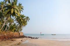 Den tropiska stranden med gömma i handflatan, Indien, Goa blå havssky Royaltyfri Fotografi