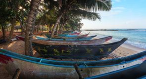 Den tropiska stranden med gömma i handflatan och fiskebåtar i Sri Lanka, Mirissa Arkivfoto