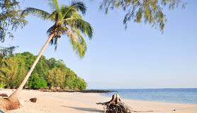 Den tropiska stranden med kokosnöten gömma i handflatan och havet på Satun arkivfoto