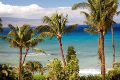 Den tropiska vykortet gillar Maui Fotografering för Bildbyråer