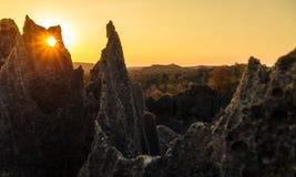 Den Tsingy konturn vaggar royaltyfri bild