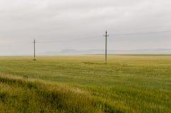 Den tunga grå färgen fördunklar i den kalla hösthimlen över gröna fält, träd, skogar, strömmar För storm elektriska poler Royaltyfri Foto