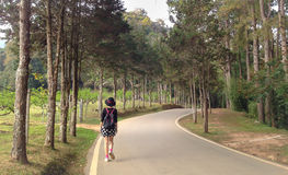 Den turist- kvinnan går på vägen i naturligt parkerar bara Royaltyfri Fotografi