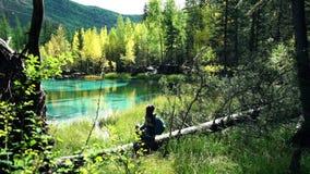 Den turist- kvinnan med ryggsäcken sitter på ett stupat träd vid den blåa bergsjön i skogen arkivfilmer