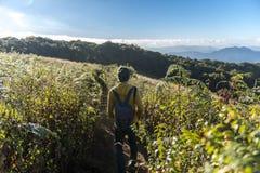 Den turist- mannen går i Kew Mae Pan Nature Trail royaltyfri fotografi