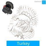 Den Turkiet fågeln lär att dra vektorn Royaltyfria Foton