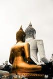 Den tvilling- Buddha Arkivbild