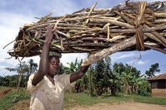 Den ugandiska flickan bär vedträ på hennes huvud royaltyfri foto