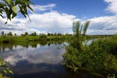 Den Ugra floden i solig dag Arkivfoto
