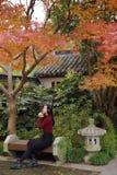 Den unga asiatiska kinesiska kvinnan som lyssnar till musik med hörlurar, sitter under träd royaltyfria bilder