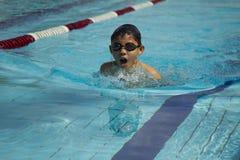 Den unga asiatiska pojken simmar bröstsim Arkivbild