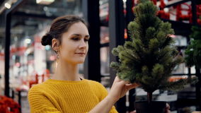 Den unga attraktiva brunettflickan på lagret väljer en konstgjord julgran, julgarnering Arkivfoto
