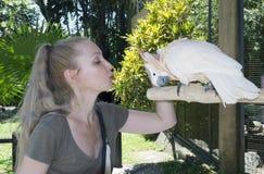 Den unga attraktiva kvinnan slår en vit kakaduapapegoja på en snut arkivbild