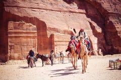 Den unga beduinen och pojkebeduinen rider kamel arkivfoto