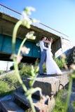 Den unga bruden och brudgummen går i natur arkivbilder