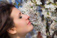 Den unga damen luktar ett blommande träd Royaltyfri Foto