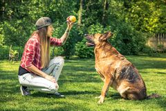 Den unga damen undervisar henne hundlydnad Arkivfoto