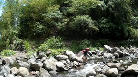 Den unga ganska damen korsar på klart stenigt vårflodvatten som är fyllt med naturlig vegetation stock video
