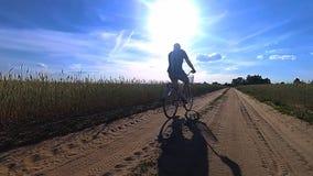 Den unga grabben rider på en cykel i mitt av ett fält med ett vete i sommartid stock video