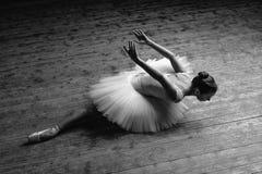 Den unga härliga ballerina poserar i studio arkivfoto