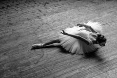 Den unga härliga ballerina poserar i studio arkivbild