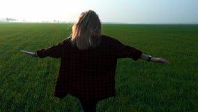 Den unga härliga blonda tonåriga flickan kör på ett nytt grönt vetefält på solnedgången Korsat fält i en rutig röd skjorta arkivfilmer