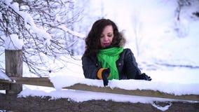 Den unga härliga flickan i ett snöig parkerar Hon står nära trästaketet Flickan tar det insnöat henne händer och slag stock video